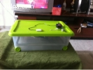 Chocadeira automatica eletrica 40a50 ovos Promoção RJ