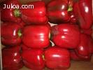 Compra de Frutas y Hortalizas