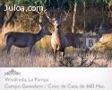 Coto de Caza de 660 has. en La Pampa - Argentina