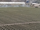 Finca 18 hectareas de regadio