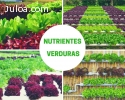 Hidroponía - Nutrientes Verduras