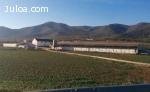 Se alquila granja, situada a 10km de la autovia Malaga-Sevil